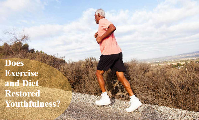 Does Exercise and Diet Restored Youthfulness
