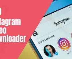 instagram video downloader website