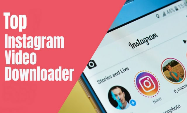 instagram video downloader website