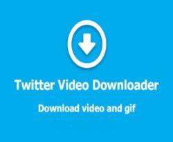 twitter video downloader list